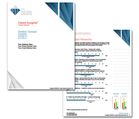 disc assessments, disc, disc profile, disc reports, disc assessment, personality report, disc personality report, disc personality test, employee selection, sales assessments, TTI, myers-briggs