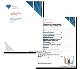 trimetrix-dna, disc assessments, disc, disc profile, disc reports, disc assessment, personality report, disc personality report, disc personality test, employee selection, sales assessments, TTI, myers-briggs