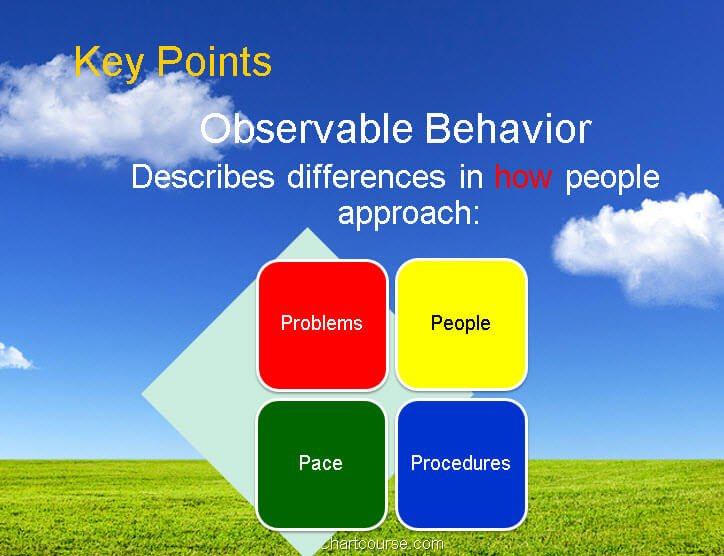 DISC assessment, reports, wiley, tests, personality, disc profile