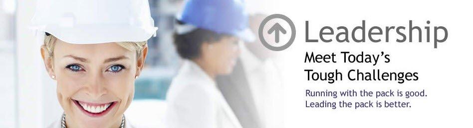 online management, supervisory training, leadership, leadership training, team leader training, online management training, supervisor training, leadership development courses